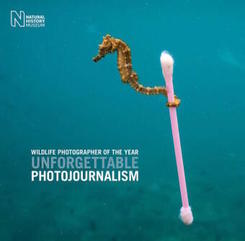 Wildlife Photographer of the Year: Unforgettable Photojournalism