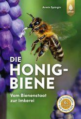 Die Honigbiene
