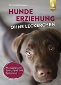 Hundeerziehung ohne Leckerchen