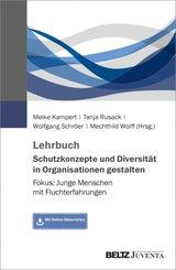Lehrbuch Schutzkonzepte und Diversität in Organisationen gestalten
