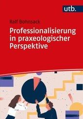 Professionalisierung in praxeologischer Perspektive