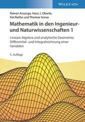 Mathematik in den Ingenieur- und Naturwissenschaften