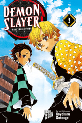 Demon Slayer - Bd.3