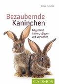 Bezaubernde Kaninchen