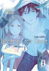 Brother for Rent - Bd.3