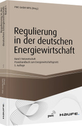 Regulierung in der deutschen Energiewirtschaft, Netzwirtschaft