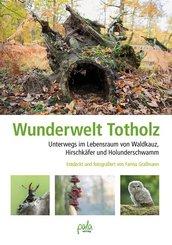Wunderwelt Totholz