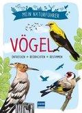 Mein Naturführer - Vögel