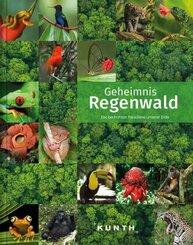 Geheimnis Regenwald