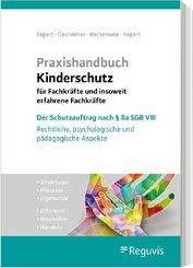 Praxishandbuch Kinderschutz für Fachkräfte und insoweit erfahrene Fachkräfte
