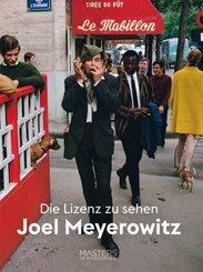 Die Lizenz zu sehen: Joel Meyerowitz