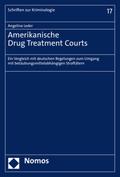 Amerikanische Drug Treatment Courts