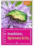 Insekten, Spinnen & Co.
