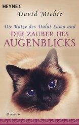 Die Katze des Dalai Lama und der Zauber des Augenblicks