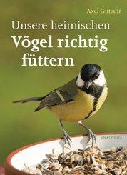 Unsere heimischen Vögel richtig füttern