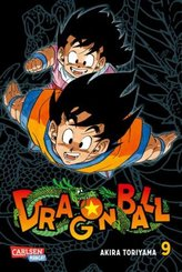 Dragon Ball Massiv - Bd.9