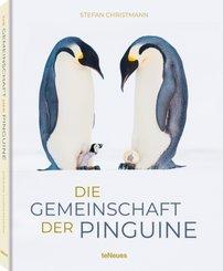 Die Gemeinschaft der Pinguine