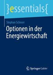 Optionen in der Energiewirtschaft