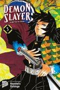 Demon Slayer - Bd.5
