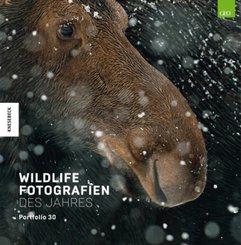 Wildlife Fotografien des Jahres - Portfolio 30
