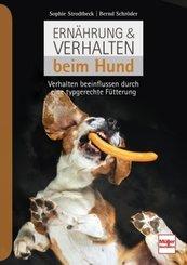 Ernährung & Verhalten beim Hund
