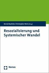Resozialisierung und Systemischer Wandel