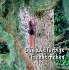 Das zweifarbige Eichhörnchen