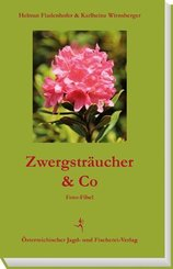 Zwergsträucher & Co