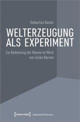 Welterzeugung als Experiment