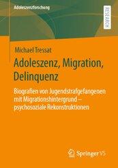 Adoleszenz, Migration, Delinquenz
