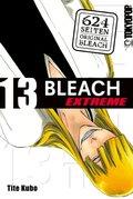 Bleach EXTREME 13