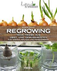 Regrowing - Neue Triebe aus Obst- und Gemüseresten