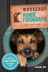 Workshop Hundefotografie