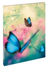 Blankbook Butterflies