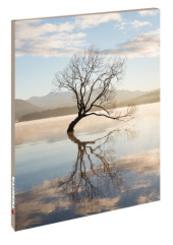 Blankbook Lone Tree