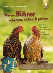 Warum Hühner scharren, nicken & picken