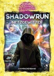Shadowrun 6, Netzgewitter