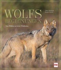 Wolfsbegegnungen