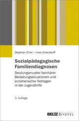 Sozialpädagogische Familiendiagnosen