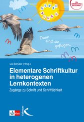 Elementare Schriftkultur in heterogenen Lernkontexten
