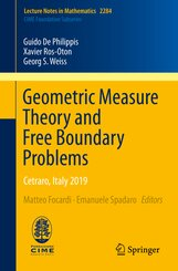 Geometric Measure Theory and Free Boundary Problems