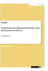 Ermittlung eines digitalen Reifegrades eines Handelsunternehmens