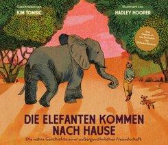 Die Elefanten kommen nach Hause