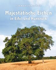 Majestätische Eichen in Eifel und Hunsrück