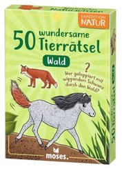 50 wundersame Tierrätsel - Wald