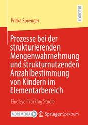Prozesse bei der strukturierenden Mengenwahrnehmung und strukturnutzenden Anzahlbestimmung von Kindern im Elementarberei