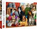 Katzen (Puzzle)