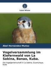 Vogelversammlung im Kiefernwald von La Sabina, Banao, Kuba.