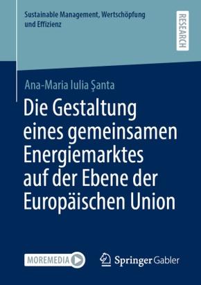 Die Gestaltung eines gemeinsamen Energiemarktes auf der Ebene der Europäischen Union