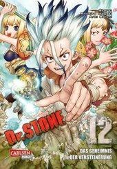 Dr. Stone - Bd.12